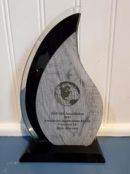 GIS Application Award